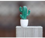 Cactus Fridge Magnets, Set of 6