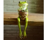 Cute Frog Succulent Planter / Plant Pot / Flower Pot / Bonsai Pot
