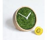 Grass Plant  Desk Clock