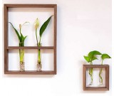 Hanging Flower Vase Bottles in Wood Stand