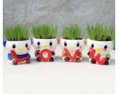 4 PCS Set Cute Cartoon Pig Ceramic Succulent Cactus Flower Potfor for Home Garden Office Desktop Decoration