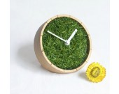 Grass Plant  Desk Clock