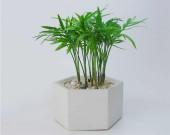 Handmade Concrete  Round  Octagonal Square Succulent  / Planter /  Plant Pot  /  Flower Pot