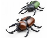 Remote Control Simulation Beetle