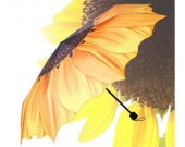 Sunflower Style 3 Folding Travel Umbrella
