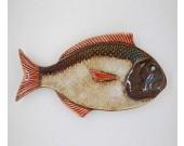 Tropical Fish Porcelain Dinner Plate