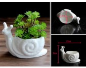2 Pack White Ceramic  Snail Succulent Planter/Plant Pot/Flower Pot