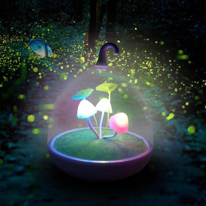 Creative Rechargeable Mushroom Led Night Light Feelgift