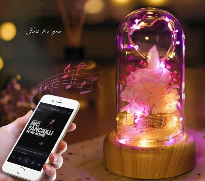 Portable LED Night Light Bottle Bluetooth Speaker