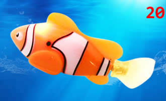 Robotic Fish