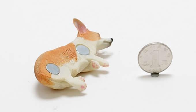 Dog  Fridge Magnets Set, Set of 4