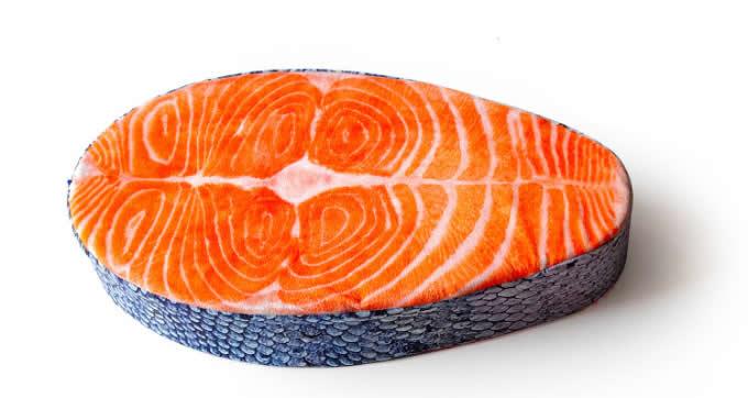 Fish Pillow Cushion