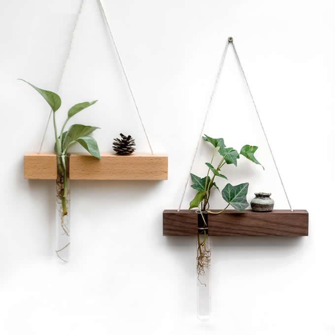 Wall Hanging Planter Test Tube Flower Bud Vase with Wood Stand