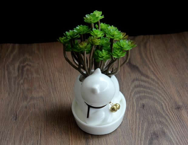 Cat Ceramic Succulent Planter Flower Pot Feelgift