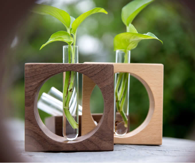 Test Tube Planter Flower Vase With Wooden Base Stand