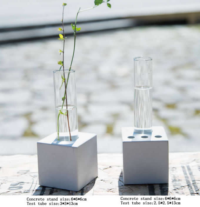 Test Tube Planter Flower Vase With Concrete Base Stand