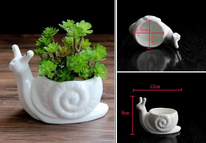 White Ceramic  Snail Succulent Planter/Plant Pot/Flower Pot