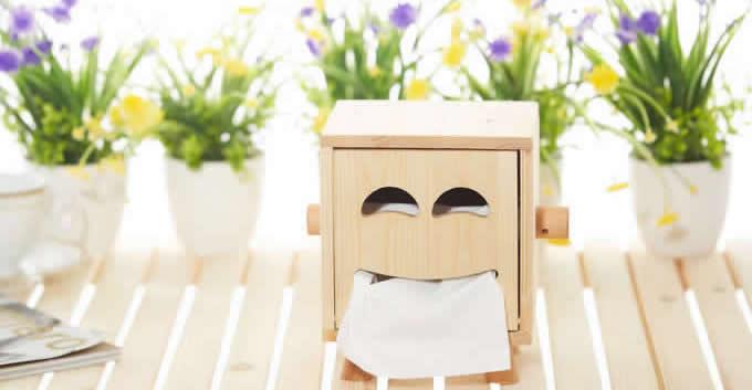 Wooden Face Tissue Box