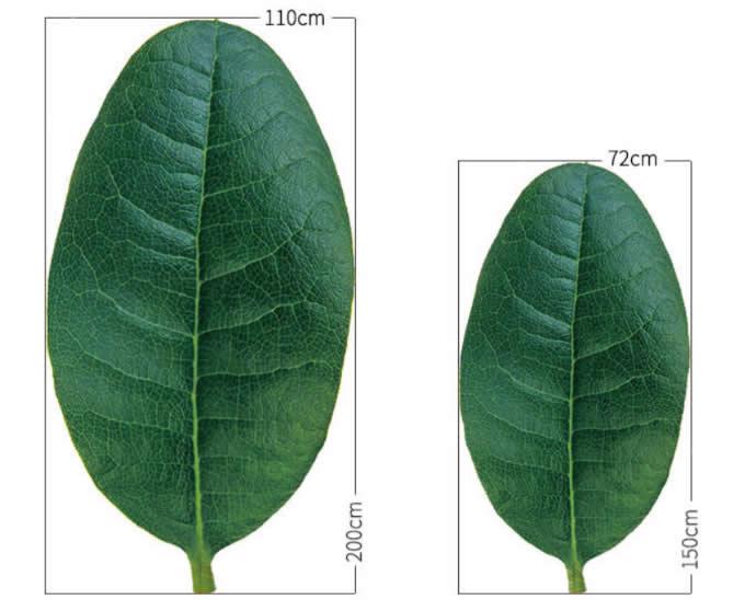 Leaf shape Soft Air Conditioning Blanket- Myrica Rubra Leaf