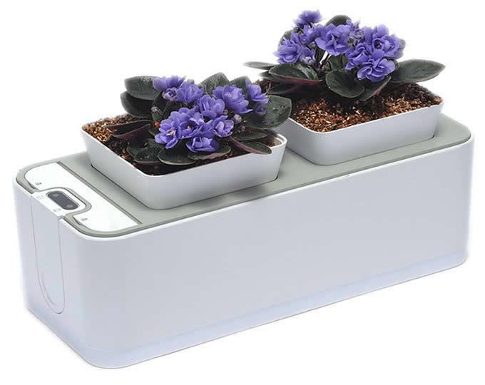 Self Watering Smart Garden Planter