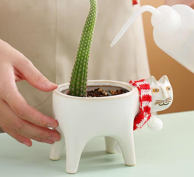 Cute Cartoon Cat Pastoral Cactus Plant Small Flower Pot